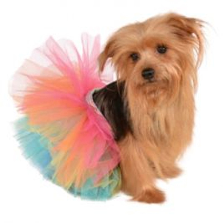 Rainbow Tutu Pet Costume
