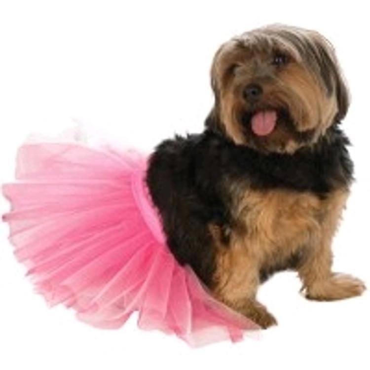 Pink Tutu Pet Costume