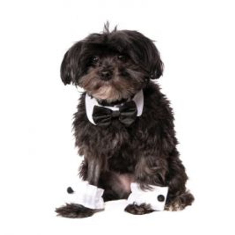 Tuxedo Pets Set
