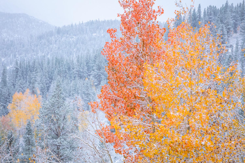 October in the Eastern Sierra