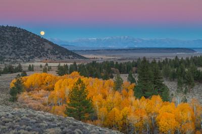 Full Moonrise, Autumn along Mammoth Creek