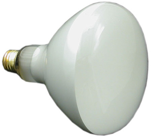 ANTHONY | FLOODLAMP, MED. BASE, 300W, 120V | 01424600