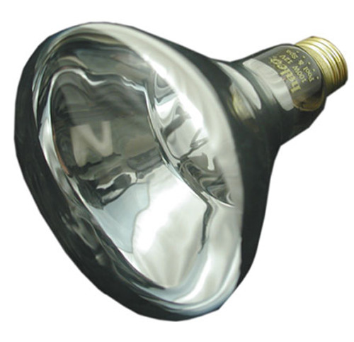 JACUZZI/CARVIN | 12V, 100W LIGHT BULB | 23-4945-86-R