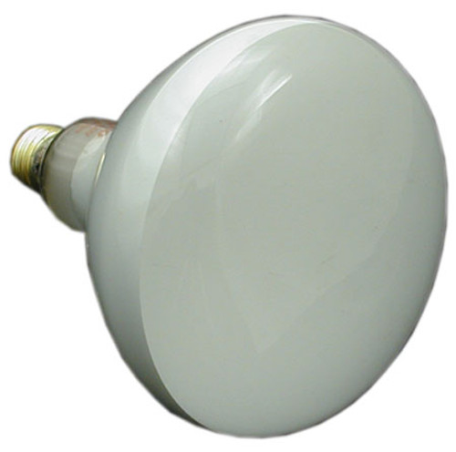 PENTAIR/AMERICAN PRODUCTS | BULB, FLOOD 500W 120V | 79102100