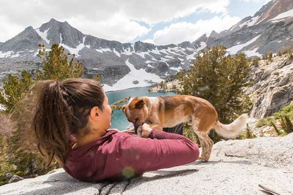 How to Travel 18,000 Miles With Your Dog