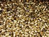 Surplus Ammo | Surplusammo.com 9mm Caliber (.355) BULLETS 124 Grain FMJ Armscor AC9124B
