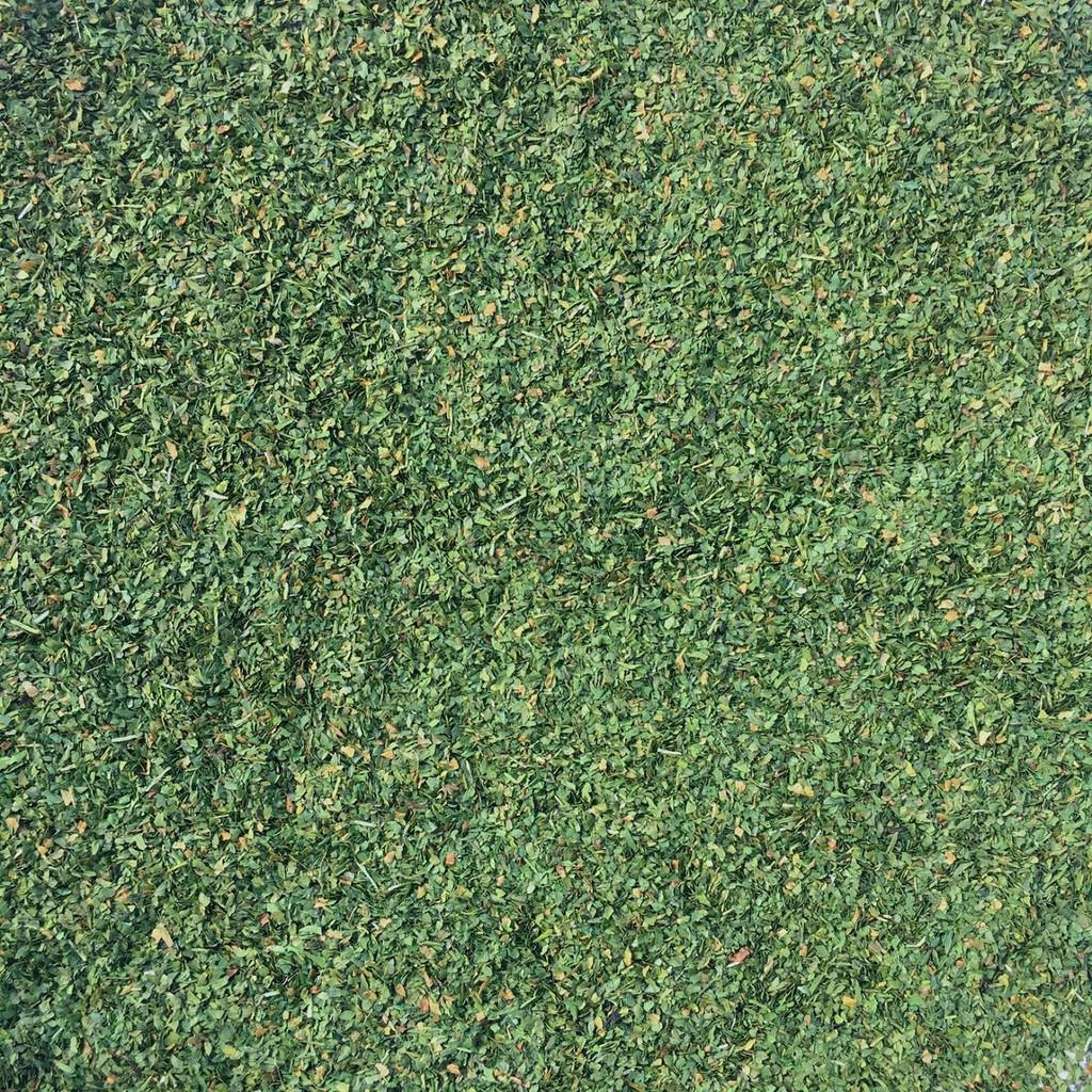 Dried Organic Cilantro Leaf - close up view