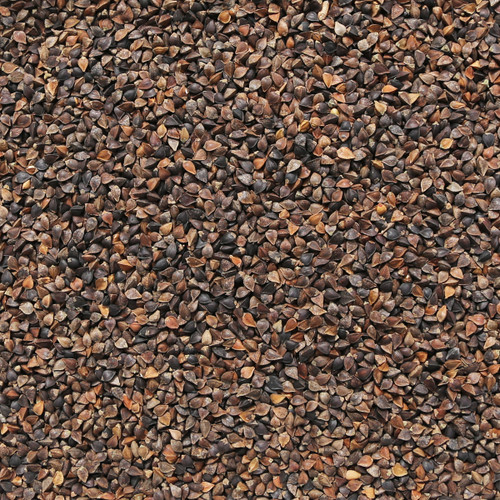 ORGANIC BUCKWHEAT, unhulled, black