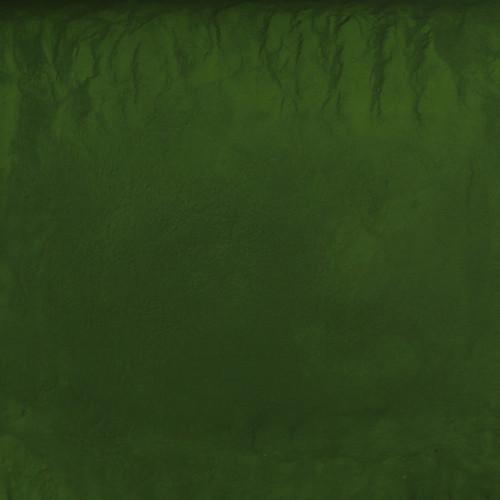 ORGANIC CHLORELLA, cracked cell, powder