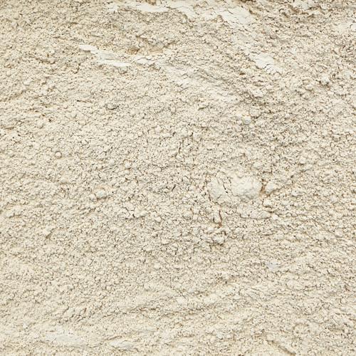 ORGANIC ASTRAGALUS, powder