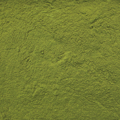 Moringa Powder - Close up view - India