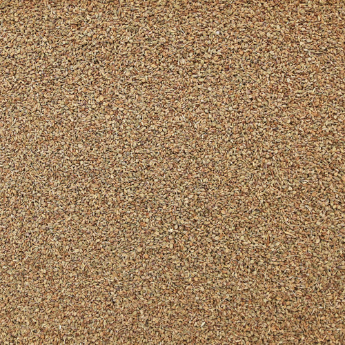 ORGANIC AJWAIN SEED, whole