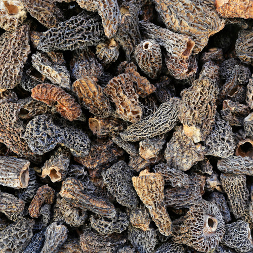 MOREL MUSHROOMS, whole, wildcrafted