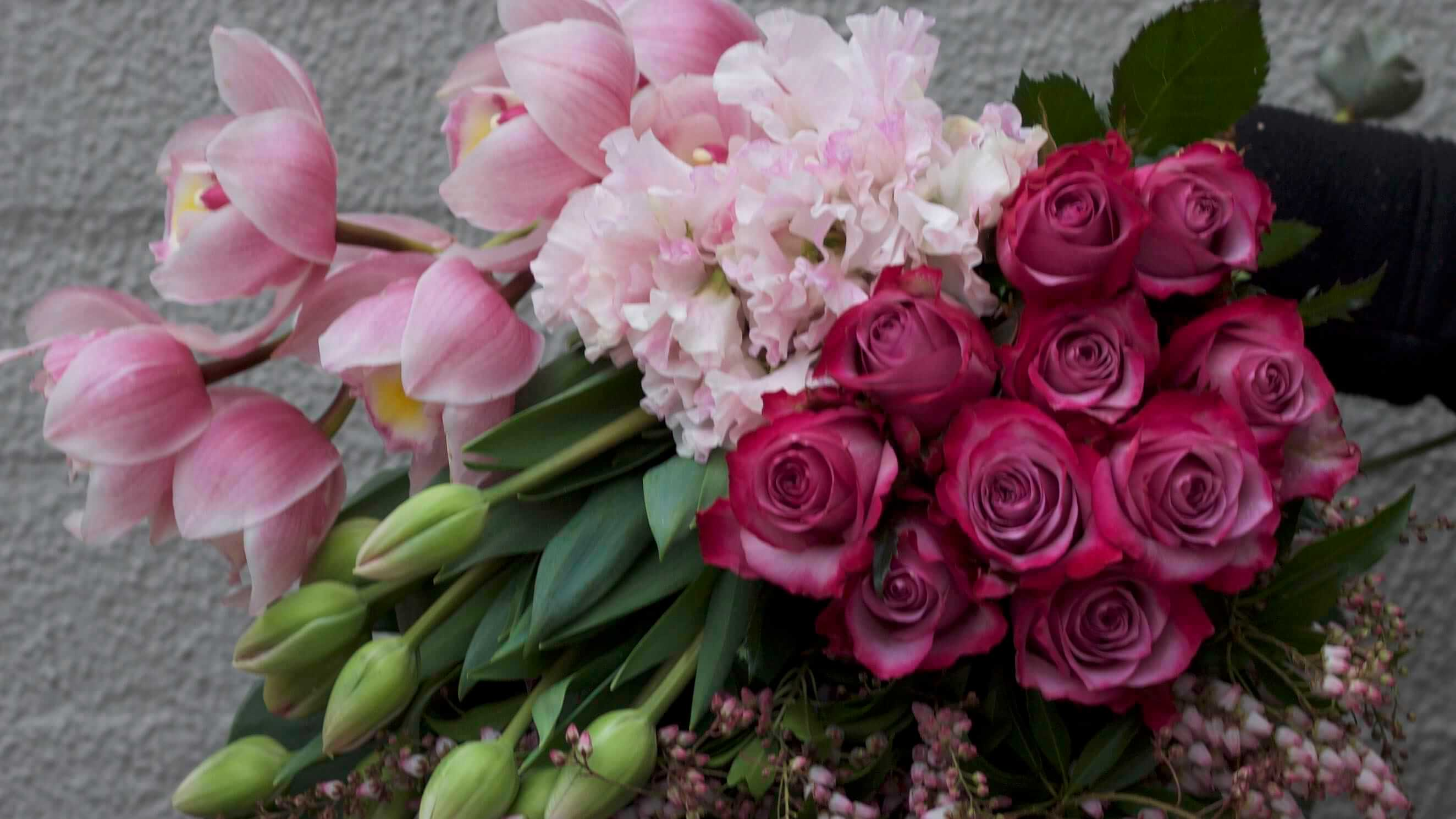 Gorgeous Blooms for all occasions Pure Flowers Lane Cove Sydney