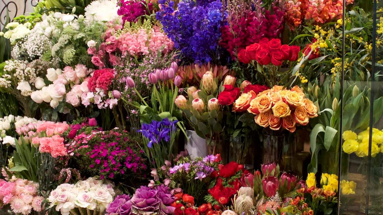 Pure Flowers Boutique Florist Stylish Handmade Blooms