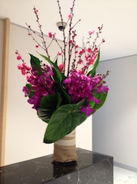 corporate flowers weekly delivery orchids