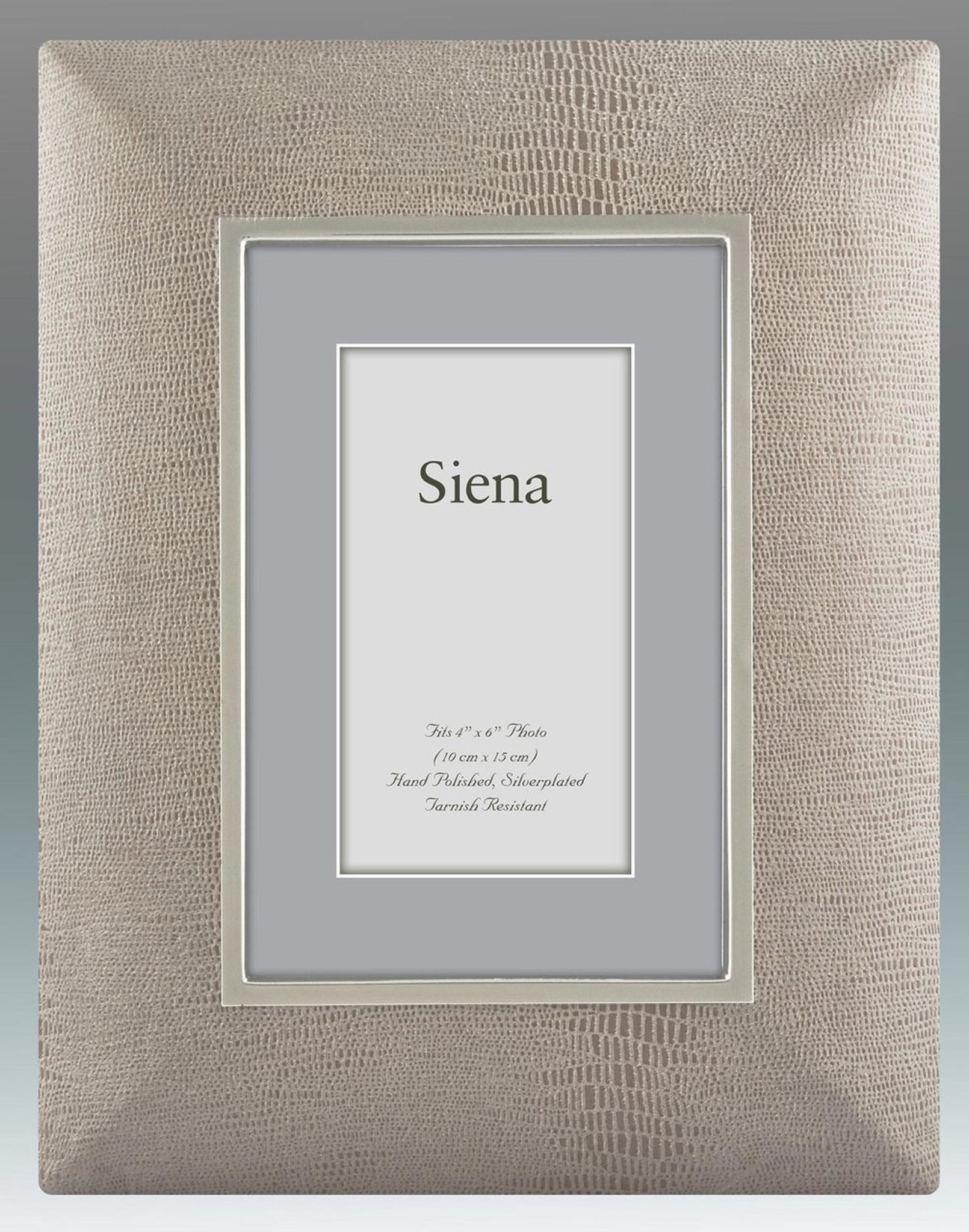 Tizo Faux Lizard Wide Tan Silver-plated Picture Frame 5 x 7 Inch ...