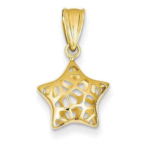 14k Gold Polished Star Pendant YC1099