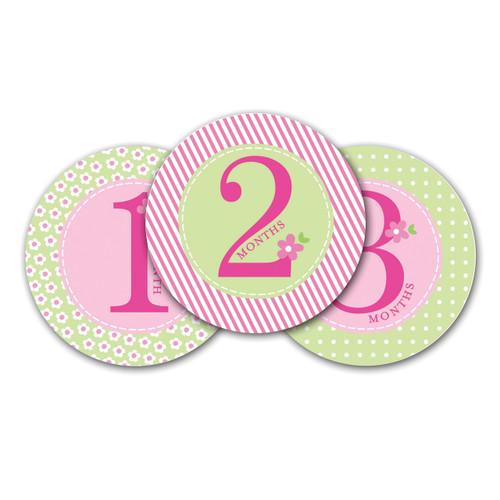 Pink Baby Milestone Stickers GM15704