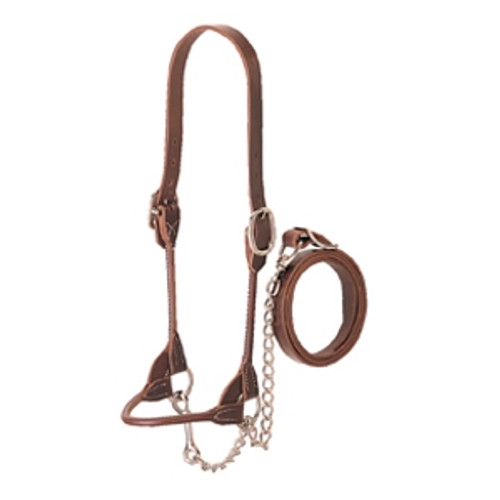 Rounded Show Halter