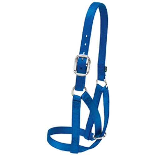 Barn Cow Halter- Large