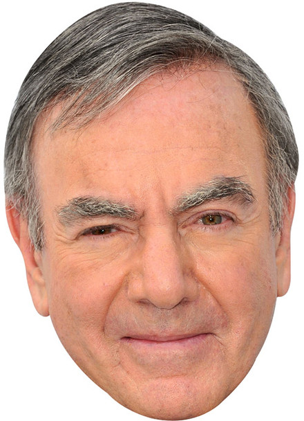 Neil Diamond The Saturdays Music Celebrity Face Mask