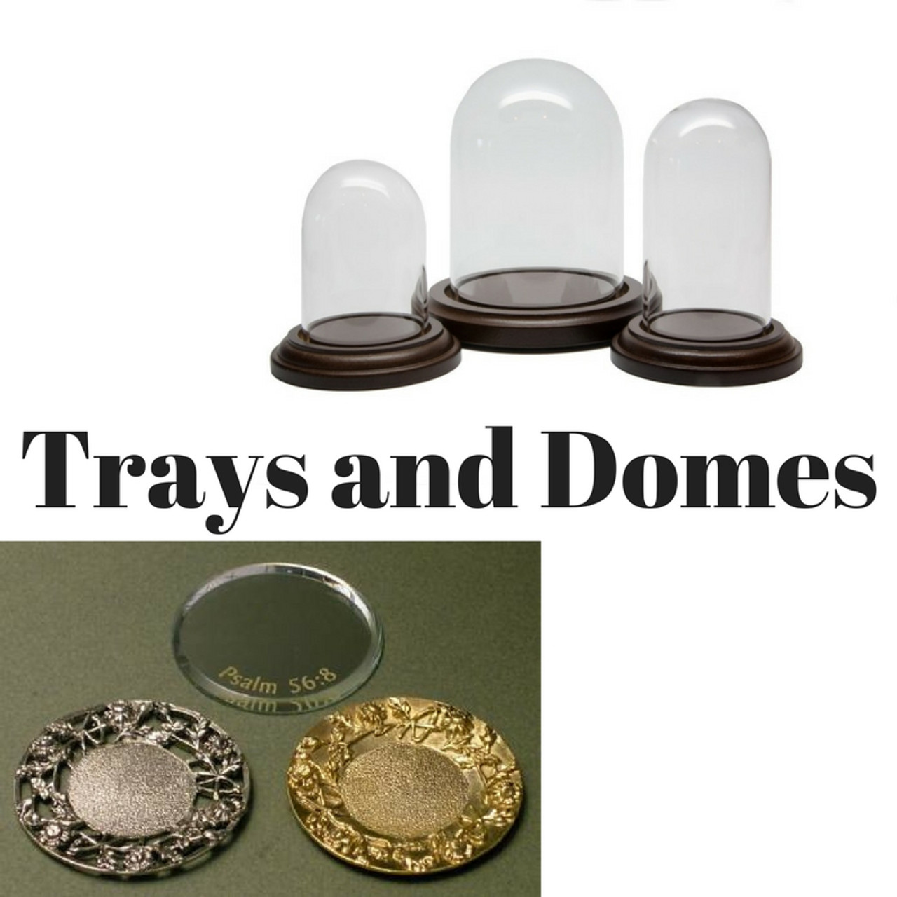 Trays and Domes Sold Separately