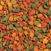 NutriBird P15 Tropical Maintenance Parrot Food - 1Kg