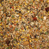 Pretty Bird Premium Seed Food for Conure