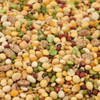 Tidymix Pulse & Rice Soaking Mix Parrot Food 4kg