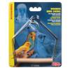 Wooden Parrot & Bird Swing