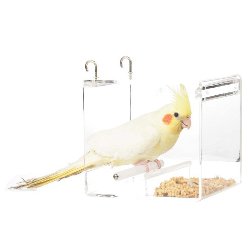 Parrot Food Mate - Acrylic Less Mess Feeder - Small