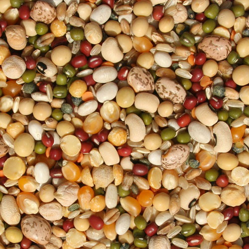 Tidymix Pulse & Rice Soaking Mix Food 4kg