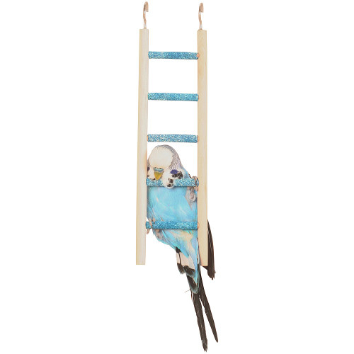 Pedicure Ladder Small Bird Toy- 5 Steps