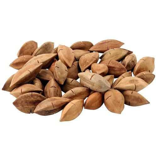 Pili Nut Parrot Treat