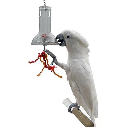 Bird Enrichment Toys : Foraging capsule advanced enrichment parrot toy