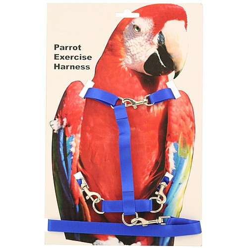Parrot and Bird Harness - Medium