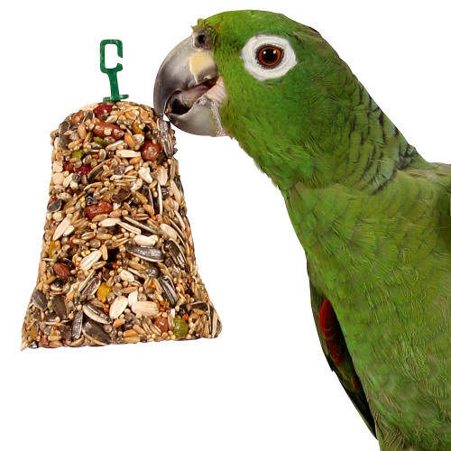Johnsons Parrot Bumper Treat Bell