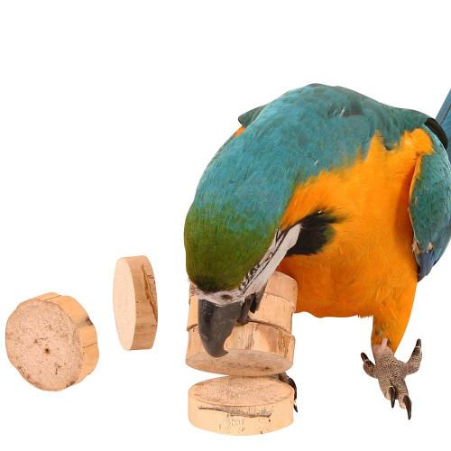 Bird Kabob Parrot Chips - Pack of 20