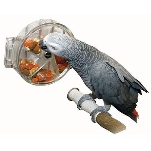 Original Foraging Wheel - Interactive Parrot Toy