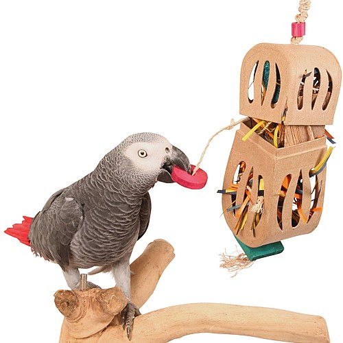 Peanut Enrichment Foraging Box Parrot Toy - Large