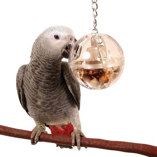 Buffet Ball with Bell - Tough Foraging Toy for Parrots