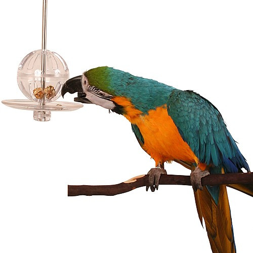 Buffet Ball with Kabob - Innovative Foraging Parrot Toy