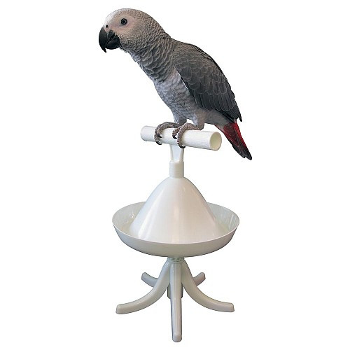The Percher - Portable Parrot Training Perch