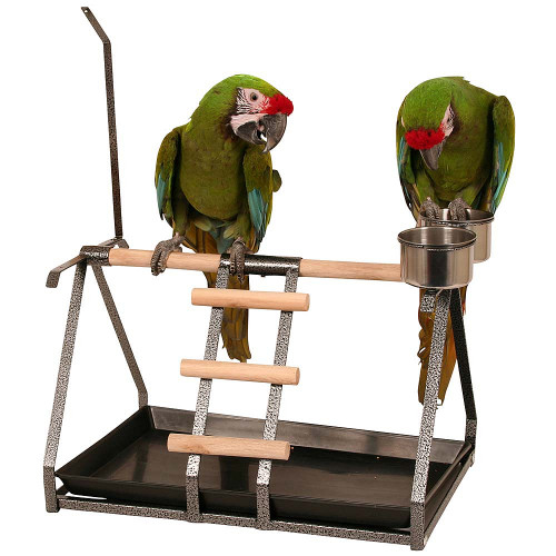 Tabletop Parrot Stand with Toy Hanger & Feeder - Antique