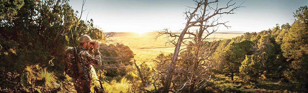 otis-sunset-landscape-hero-cc-lores.jpg