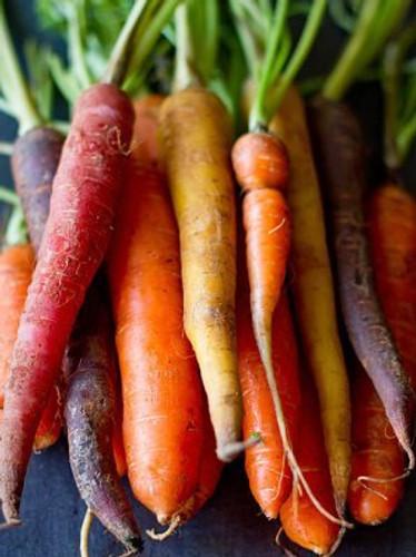 Carrots, Rainbow Blend
