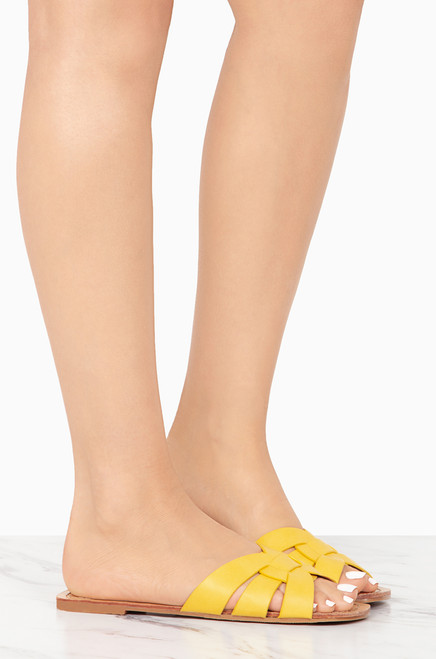 Verbena - Yellow