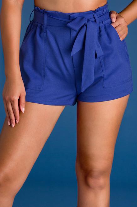 Pay Raise Shorts - Blue