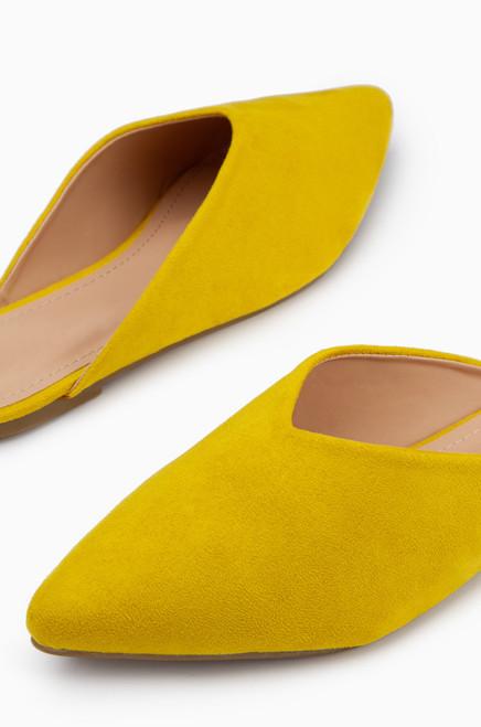Oxford - Mustard